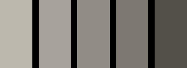 CAS005